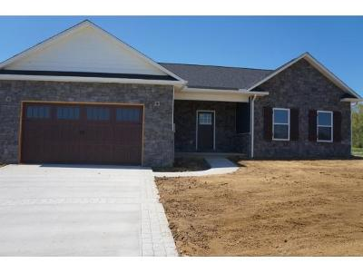 Grainger County Single Family Home For Sale: 168 Shields Crossing