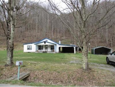 Roan Mountain Single Family Home For Sale: 702 Hampton Creek Road