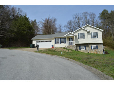 Greeneville Single Family Home For Sale: 108 Plymouth Hill