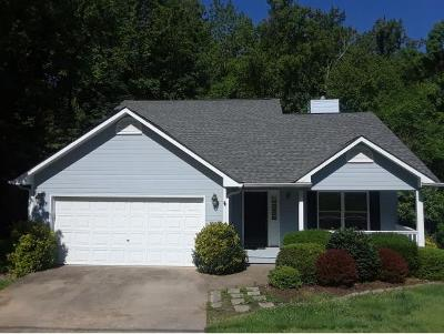Kingsport Single Family Home For Sale: 1004 Cox Trail Place