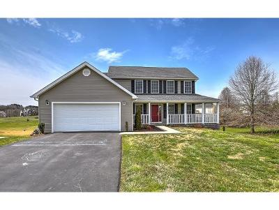 Single Family Home For Sale: 319 Charlton Court