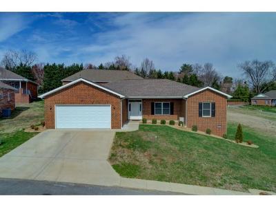 Greeneville TN Condo/Townhouse For Sale: $227,000