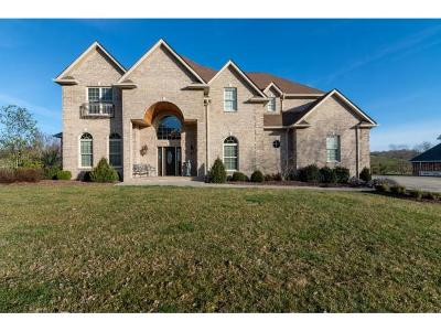 Abingdon Single Family Home For Sale: 23707 Meade Drive