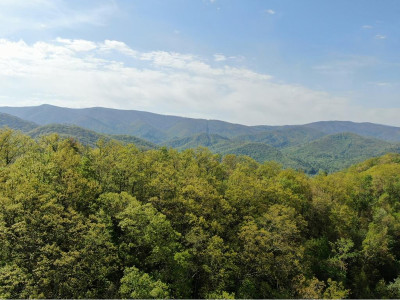 Unicoi Residential Lots & Land For Sale: Dameron Ridge Rd