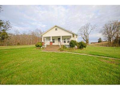 Single Family Home For Sale: 4790 Kingsport Highway