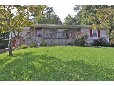 Kingsport Single Family Home For Sale: 1456 Ridgecrest Avenue