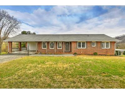 Bristol Single Family Home For Sale: 664 Old Stage Trl
