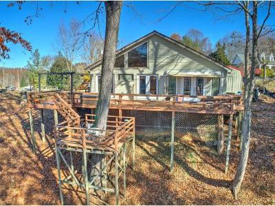 Blountville Single Family Home For Sale: 1122 Gottland Shoals Rd