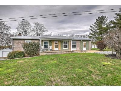 Greeneville Single Family Home For Sale: 217 Broom Factory Road