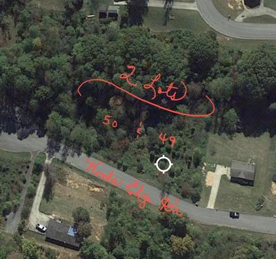 Blountville Residential Lots & Land For Sale: 50 Woods Edge Dr