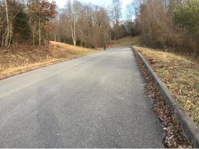 Blountville Residential Lots & Land For Sale: 52 Woods Edge Dr