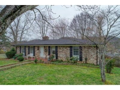 Rogersville Single Family Home For Sale: 609 Douglas Drive
