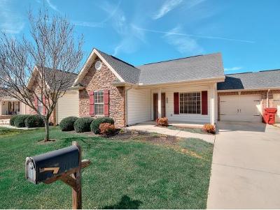 Johnson City Condo/Townhouse For Sale: 1027 Appaloosa Trl #1027
