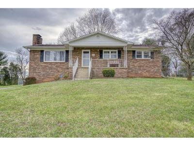 Single Family Home For Sale: 249 Sycamore