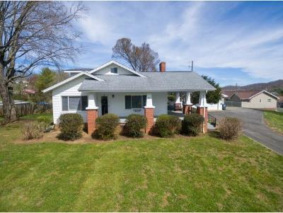 Kingsport Single Family Home For Sale: 545 Virgil Avenue