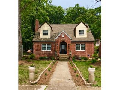 Kingsport Single Family Home For Sale: 1316 Catawba Street