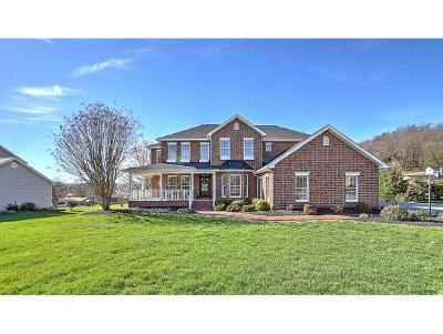 Kingsport Single Family Home For Sale: 156 Peppertree Drive