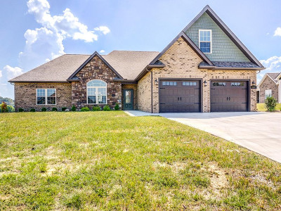 Piney Flats Single Family Home For Sale: 3047 Allison Meadows