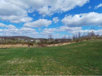 Washington-Tn County Residential Lots & Land For Sale: TBD Free Hill Road