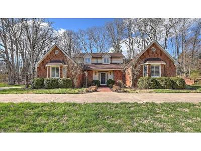 Kingsport Single Family Home For Sale: 904 Chippendale Road