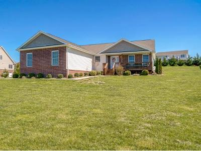 Johnson City Single Family Home For Sale: 252 Flourville