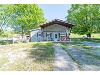 Abingdon Single Family Home For Sale: 23889 Walden Road