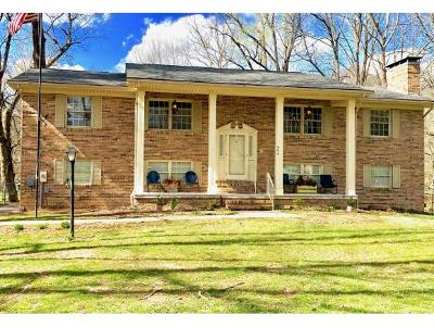 Blountville Single Family Home For Sale: 484 Fall Creek Road
