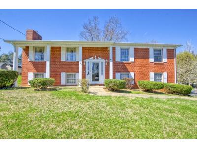 Kingsport TN Single Family Home For Sale: $169,575