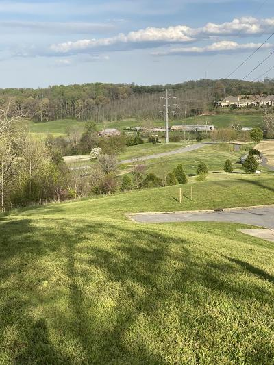 Washington-Tn County Residential Lots & Land For Sale: 1093 Hawk Nest Court