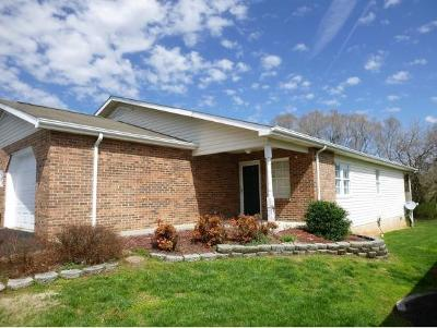 Kingsport TN Condo/Townhouse For Sale: $129,900