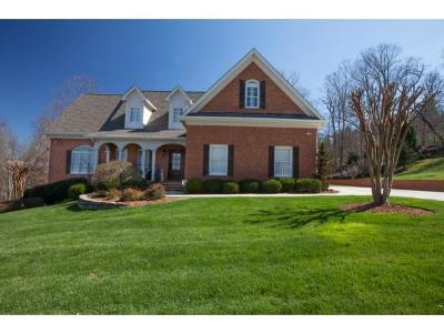 Kingsport Single Family Home For Sale: 4913 Preston Park Drive