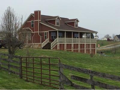 Chuckey Single Family Home For Sale: 271 Stockton Rd