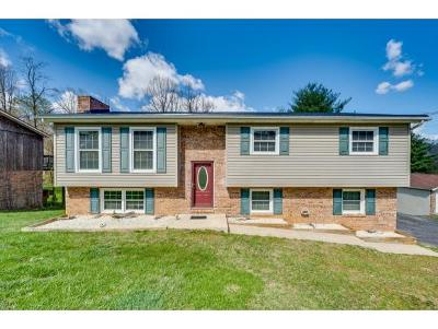 Single Family Home For Sale: 334 Summerville