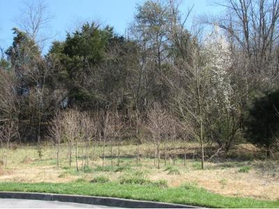 Residential Lots & Land For Sale: Lot 3 Lockport Circle