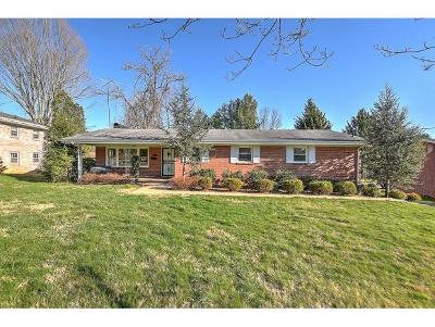Johnson City Single Family Home For Sale: 2215 N. Greenwood