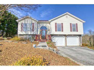 Jonesborough Single Family Home For Sale: 172 County Farm Rd