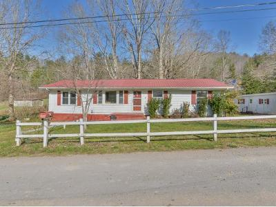 Unicoi Single Family Home For Sale: 125 Mose Ledford Road