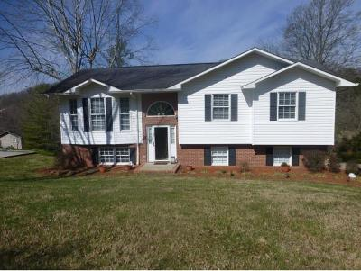 Kingsport Single Family Home For Sale: 3816 Thornton Drive