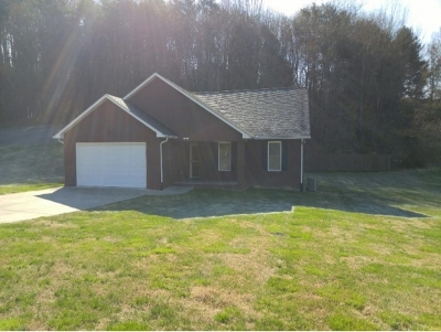 Greeneville Single Family Home For Sale: 310 Shiloh Shoals Dr