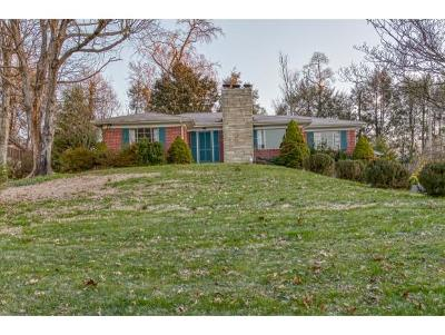 Bristol Single Family Home For Sale: 1774 Overhill Dr