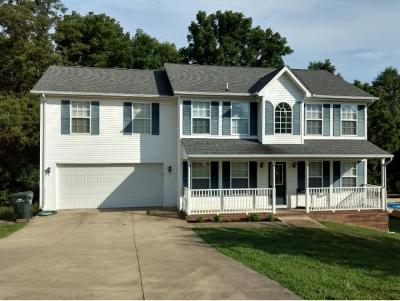 Bristol VA Single Family Home For Sale: $234,790