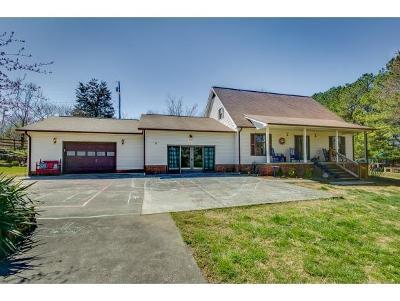 Blountville TN Single Family Home For Sale: $250,000