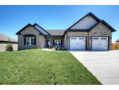 Kingsport Single Family Home For Sale: 3313 Murrayfield Way