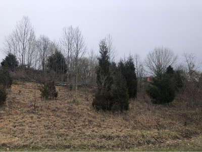Bristol TN Residential Lots & Land For Sale: $22,900