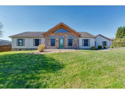 Blountville Single Family Home For Sale: 413 Hawley Meadow Ct