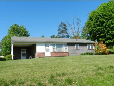 Single Family Home For Sale: 421 Gallop Ave.