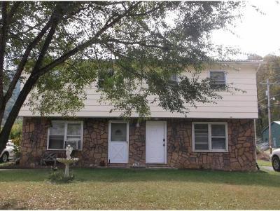Elizabethton Multi Family Home For Sale: 115 Journeys End