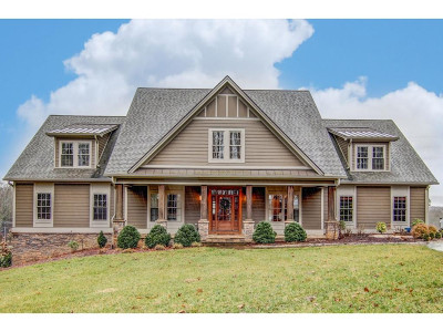 Bristol Single Family Home For Sale: 15151 Stonewall Ridge