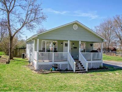 Kingsport Single Family Home For Sale: 1512 Central Street