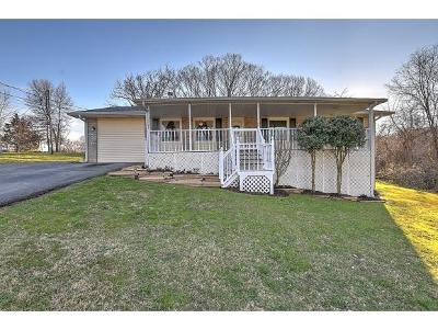 Johnson City TN Single Family Home For Sale: $159,900